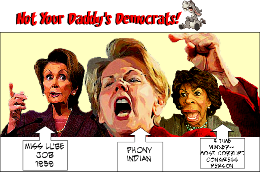 Not Your Daddys Dems